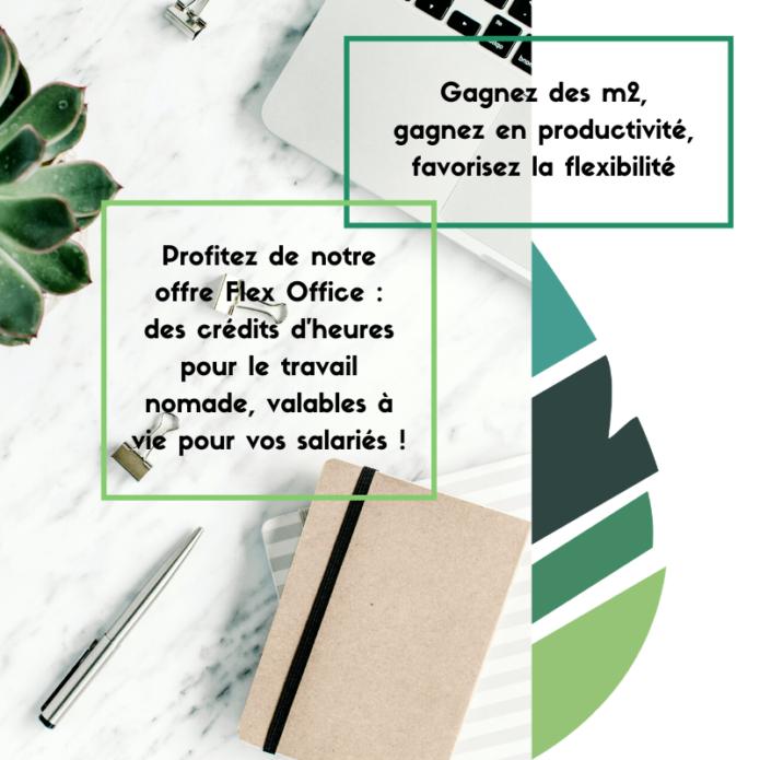 flex_office_annecy_salaries_nomades_coworking